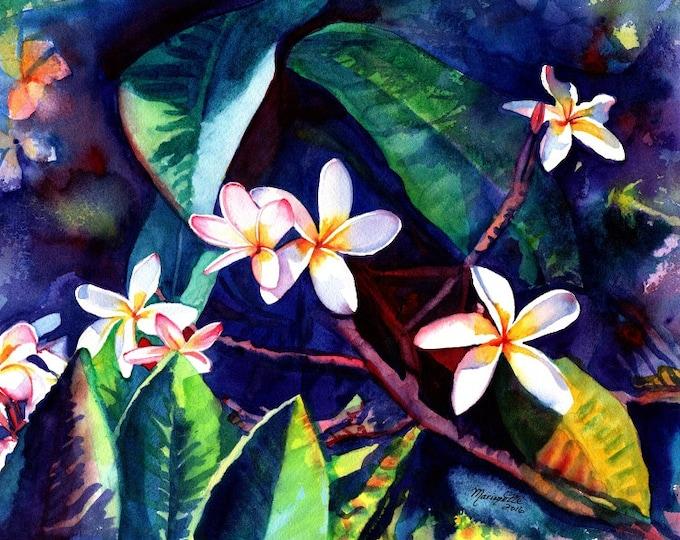 plumeria art print frangipani hawaiian lei flowers plumerias hawaii decor kauai art gallery paintings oahu maui  hawaiian painting aloha