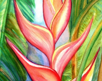 Pink Heliconia art print from Kauai Hawaii hot pink orange exotic flower coral Tropical Flower Art Kauai Fine Art Hawaiian Wall Decor