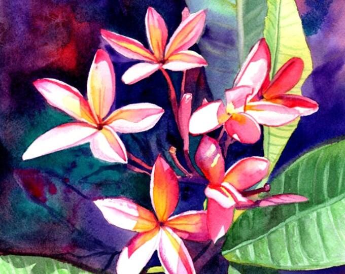 Plumeria Art, Tropical Flower Painting, Plumeria Print, Frangipani Art, Kauai Fine Art, Hawaiian Design, Hawaiian Flowers, Hawaii Decor