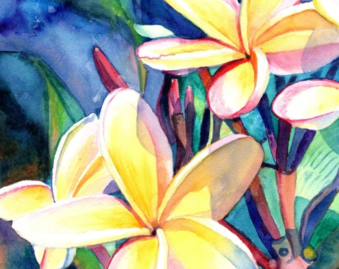 plumeria print, Hawaiian plumeria, frangipani art, plumeria art, Kauai art print, exotic flower art, Hawaii flower, Hawaiian flowers