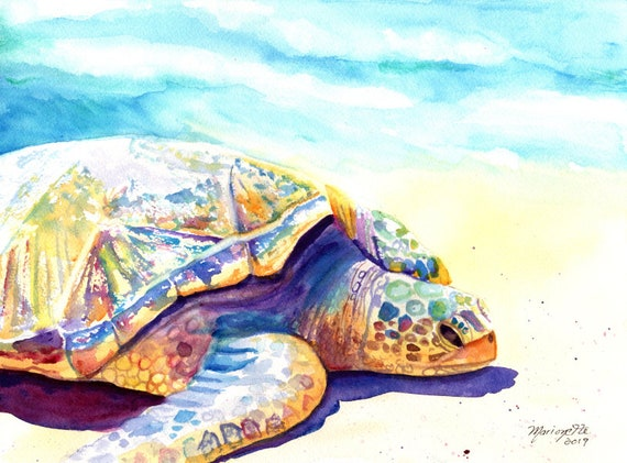 Turtle Painting, Sea Turtle Fine Art Print, Kauai Art, Turtles, Hawaiian Honu Paintings, Kids Wall Art, Ocean Sea Decor, Animal Prints