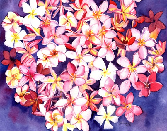 Kauai Floating Plumeria Print from Kauai Hawaii plumerias frangipani aloha flower Hawaiian flowers tropical