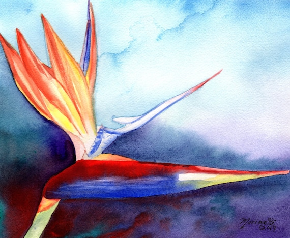 Bird of Paradise Watercolor, Bird of Paradise Plant, Tropical Flowers, Bird of Paradise Art, Kauai Art, Original Hawaiian Painting