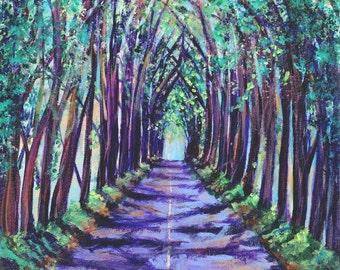Kauai Tree Tunnel - Kauai Art - Kauai  Print - Koloa Tree Tunnel - Kauai Art Prints - Hawaii  Art - Hawaiian Art - Maluhia Road