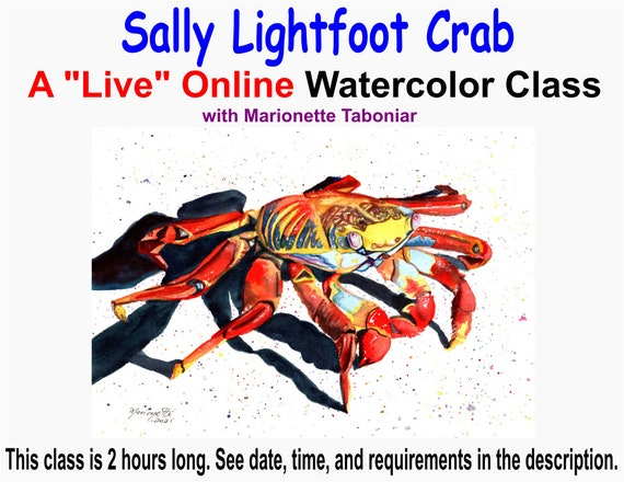 Sally Lightfoot Crab - A Live Online Watercolor Class with Marionette Taboniar - Saturday, May 8 -  Zoom Art Classes - Zoom Lesson