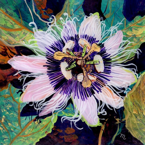 Lilikoi Passion Flower,  Passion Fruit Art, Passion fruit print, passiflora painting, lilikoi flower art, Kauai art, Aunty Lilikoi