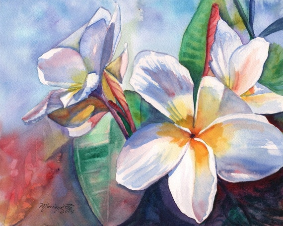 plumeria art print  frangipani art hawaiian lei hawaii paintings tropical flowers kauai artwork kauaiartist plumeria artwork