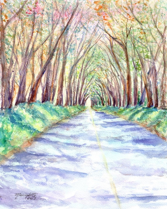 Kauai Art, Kauai Tree Tunnel, Kauai Painting, Hawaii Art, Hawaii Painting, KauaiArtist, Tree Painting, Hawaii Artist
