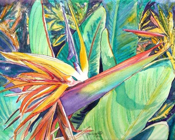 Bird of Paradise Art, Tropical Flower paintings, art prints, Hawaiian decor, Kauai wall art, exotic flower art, tropical plants, floral art