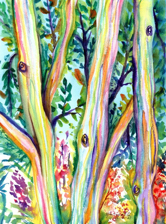 Rainbow Eucalyptus Tree Watercolor Painting Hawaiian Trees Kauai Art Hawaii Wall Decor