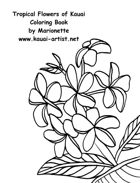 Coloring Book Tropical Flowers of Kauai Instant Download DIY Printable PDF