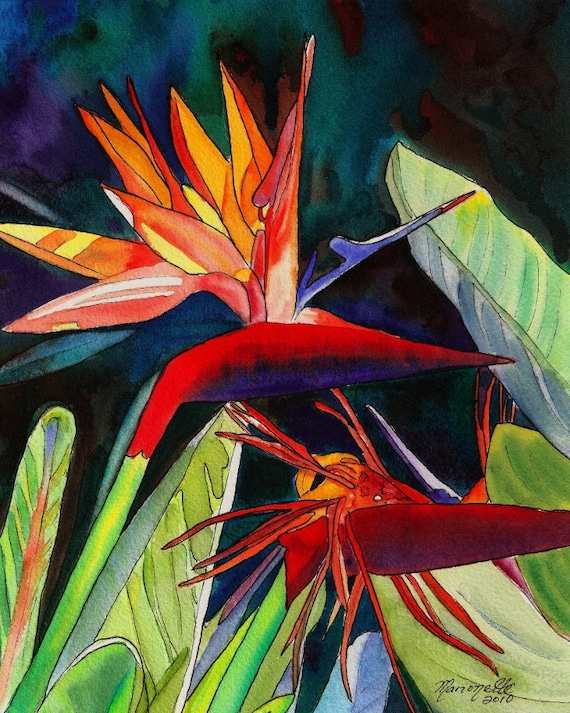 Bird of Paradise,  tropical flower, Hawaiian print, Kauai Painting, Strelitzia, exotic flowers, crane lily, crane flowers, tropical bouquet