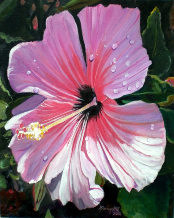 Pink Hibiscus Art, Hibiscus prints, Hawaiian flowers, Hawaiian art, tropical hibiscus, flower with rain drops, Kauai art, Hawaii art