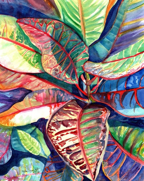 croton tropical leaves print kauai hawaii colorful foliage plants  hawaiian decor marionette taboniar kauaiartist kauai prints