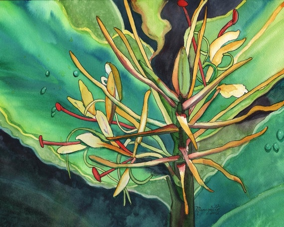 Kahili Ginger, tropical Print, Kauai art, Hawaii art, Ginger Plant, Kokee, Waimea Canyon, Hawaiian painting, Hedychium gardnerianum, flowers