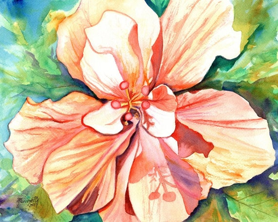 hibiscus art print, flower prints, hawaiian art,  peach hibiscus, hibiscus paintings, kauai maui oahu,  hawaiiana, tropical flowers