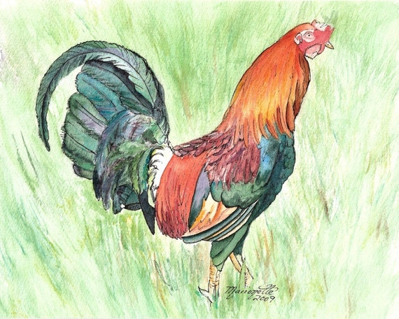 rooster print, rooster art, rooster painting, kauai rooster art, kauai chickens, kitchen decor, kauai chicken art