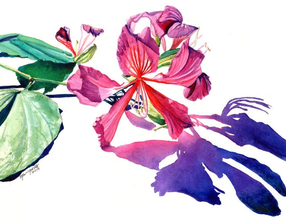 Hong Kong Orchid Tree Flower, Flower Watercolor,  Original Watercolor, Bauhinia blakeana, Hawaiian flower, Hawaii Decor, Kauai Art