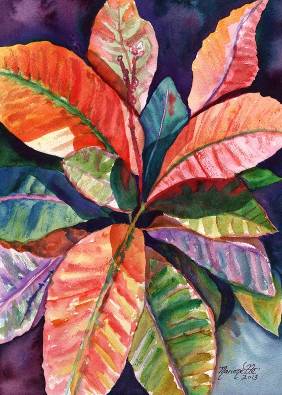 Tropical Leaves art print from Kauai Hawaii hot pink orange exotic flower Colorful Croton Leaves