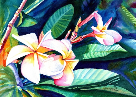 Blooming Plumeria,  art prints, Kauai giclee, Hawaiian flower art, frangipani, Hawaii interior decor, Plumerias, Kauai art,