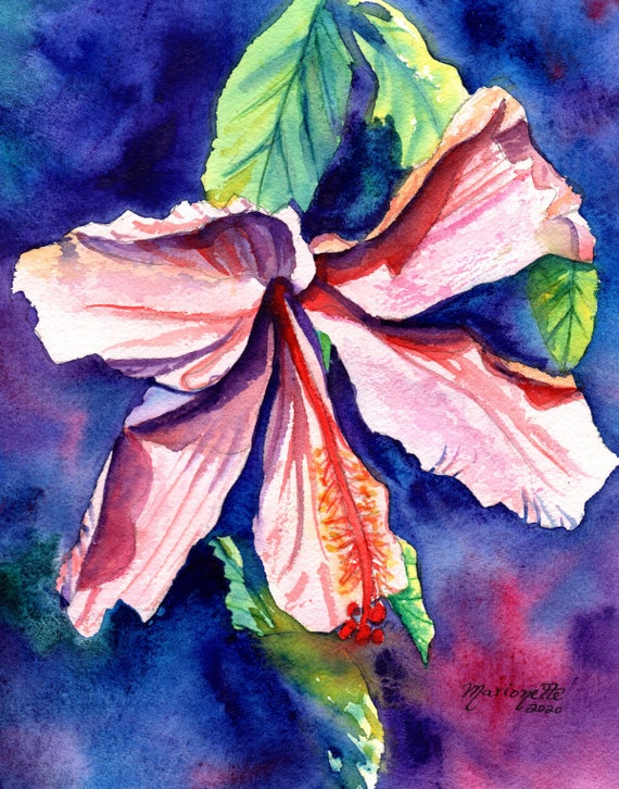 Hibiscus Watercolor, Original Watercolors, Hibiscus Paintings, Tropical Paintings, Hibiscus Art, Yellow Pink Hibiscus, Hawaii art, Kauai art