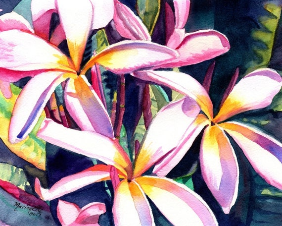 Plumeria Watercolor print from Kauai Hawaii pink frangipani art tropical flowers Hawaii art Pink Plumeria