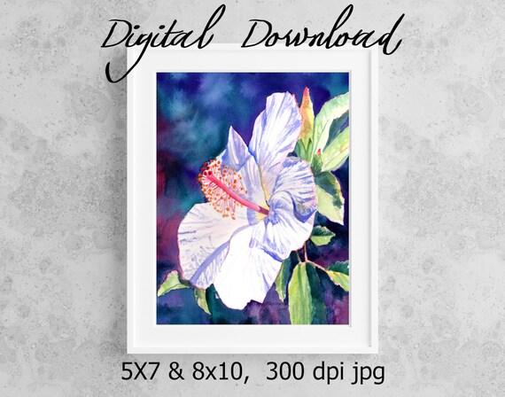 White Hibiscus Print Digital Download 8x10 5x7 jpg Watercolor Print Printable wall art Downloadable Aloha Decor Hawaii Art Tropical Flower