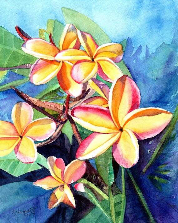 plumeria art, plumeria print, plumeria artwork, paintings of plumeria, kauai artist, hawaiian art galleries, oahu maui, kauai fine art,