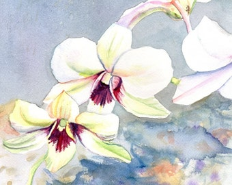 Orchid Art Print - Tropical Flower Art - White Orchid Painting - Hawaii wall art - Hawaiian home decor - White Orchids - Tropical Flowers