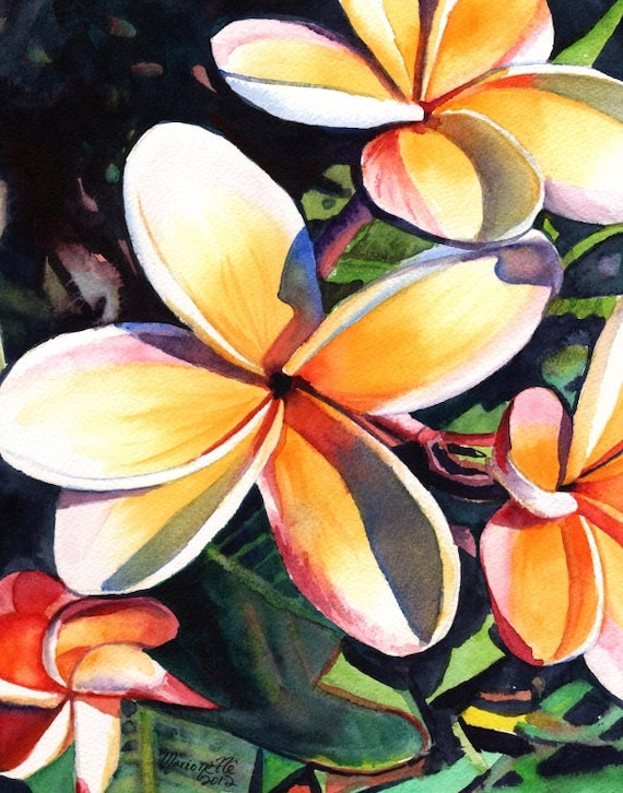plumeria art print, plumeria artwork, paintings of plumeria, kauai artist, hawaiian art galleries, kauai art, oahu maui, plumeria artwork