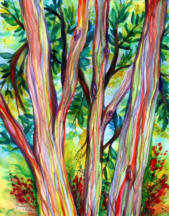Rainbow Eucalyptus Tree, Hawaiian Trees, Kauai Art, Hawaii Wall Decor, Hawaii Paintings, Kauai Art, Tropical Wall Art
