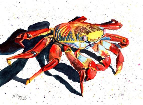 Sally Lightfoot Crab, Galapagos Island Animal, Original Watercolor, Ocean Life, Ocean Decor, Grapsus grapsus, Red Rock Crab
