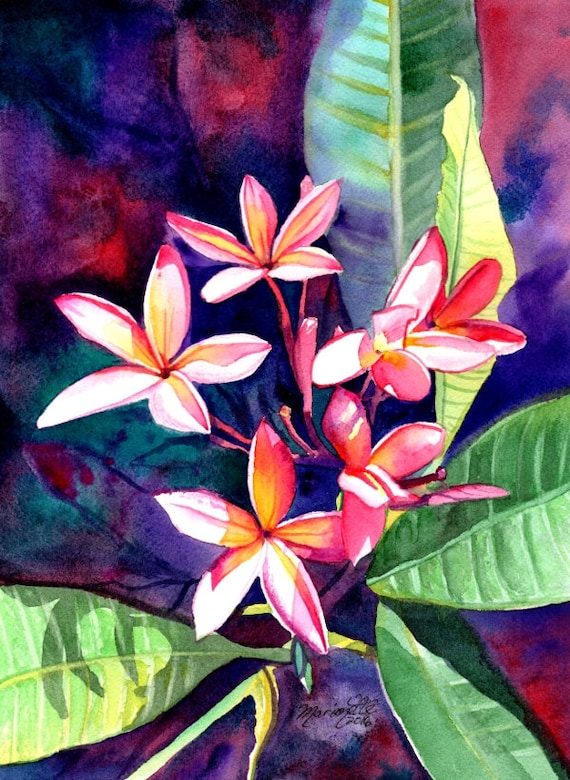 Plumeria Art, Tropical Flower Painting, Plumeria Print, Frangipani Art, Kauai Fine Art, Hawaiian Design, Hawaiian Flowers, Hawaii Decor
