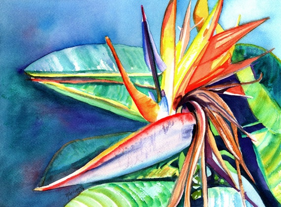 Bird of Paradise Print, Bird of Paradise Watercolor Art,  Hawaii Decor, Kauai Art, Hawaiian Painting