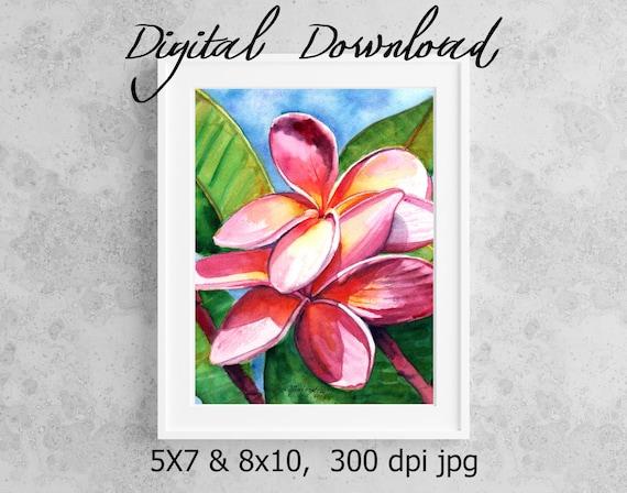 Pink Plumeria Print Digital Download 8x10 5x7 jpg Watercolor Print Printable wall art Downloadable Aloha Decor Frangipani Tropical Flower
