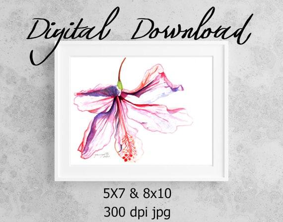 Hibiscus Print, Printable Wall Art, Downloadable Art, Poster Art, DIY Prints, Hawaii Hibiscus Decor, Pink Hibiscus, Aloha Flower