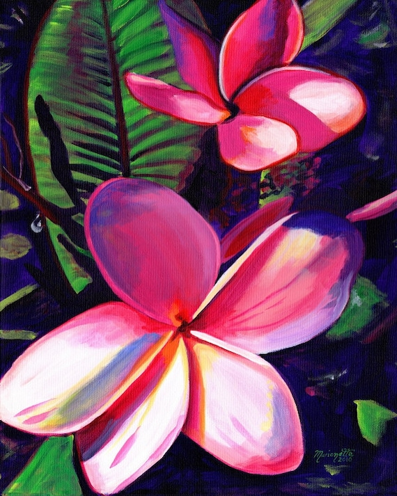 Pink Plumeria - plumeria print - Kauai Hawaii - Hawaiian Aloha Flower - Tropical Decor - Interior Design - Plumerias Frangipani Art - Aloha