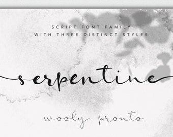 Serpentine Modern Brush Script Font, Swashes, Digital Download, Commercial Use Modern Calligraphy OTF, hand drawn script, templett corjl use