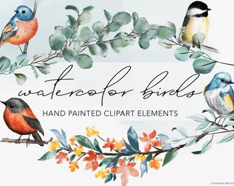WATERCOLOR BIRDS   Handpainted Clipart Graphics   botanical modern greenery wreaths and frames with bird illustrations for commercial use