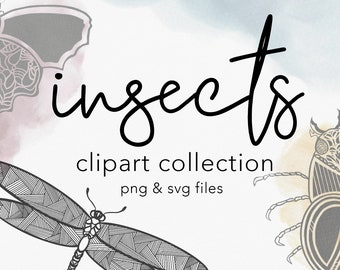 INSECTS   Watercolor Clipart Graphics   india ink linework tattoo drawing art for creative design projects, includes vector SVG + PNG files