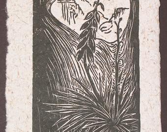 Original Woodcut Spanish Bayonet Yucca Mojave Desert Landscape Flora Cactus