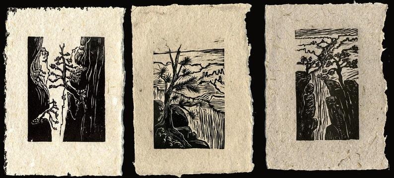SET of 3 Original Woodcut Prints Grand Canyon Hikers Views Rim image 0