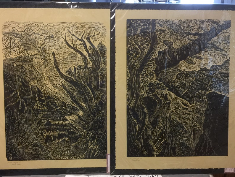 Matched Set of 2 Woodcuts Magnificent Landscape Views of the image 0