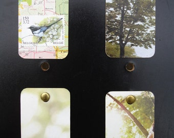 Upcycled Mini Wall Art Nature Calls Bird Trees Foliage Green Leaves Map set of 4 FREE SHIPPING