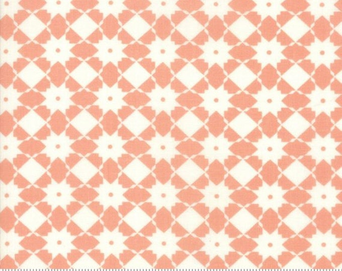 Garden Variety (5072 18) Apricot Bright Side by Lella Boutique