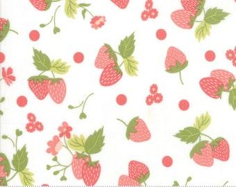 Strawberry Jam Cloud Strawberry Polka Dot by Corey Yoder (Little Miss Shabby) for Moda (29062 11)