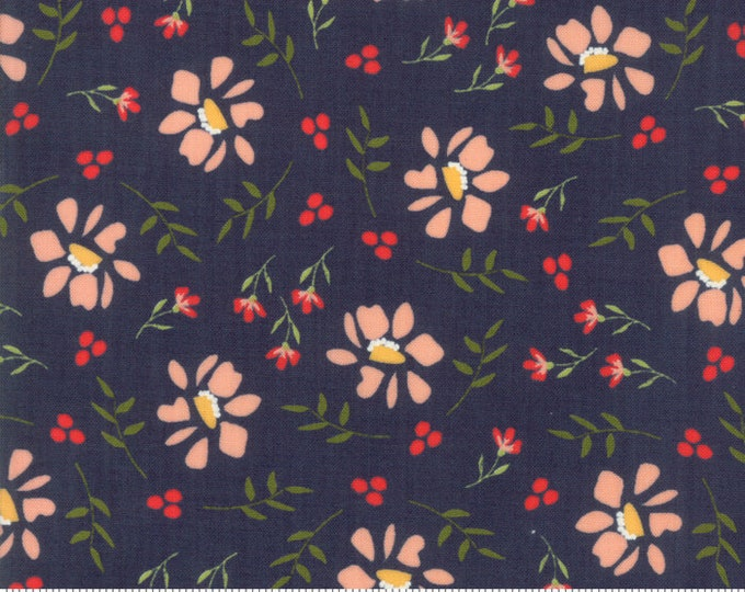 Walkabout Night Sky Morning Glory (37561-18) by Sherri and Chelsi for Moda Fabrics - 1/4 yard piece