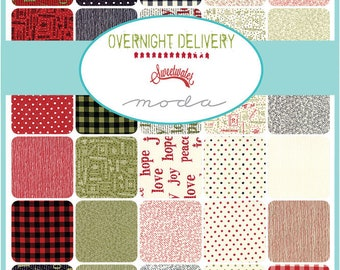 Overnight Delivery by Sweetwater - Half Yard Bundle - Complete Set
