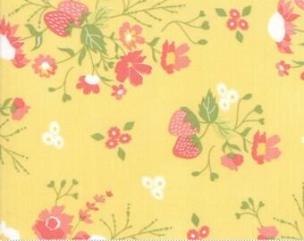 Strawberry Jam Lemonberry Strawberry Garden by Corey Yoder (Little Miss Shabby) for Moda (29060 15)