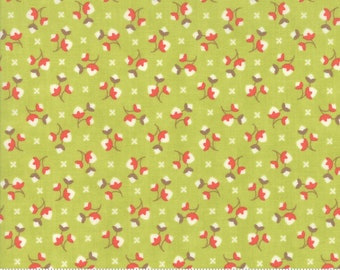 Scarlet and Sage Sage Cotton Blossoms by Fig Tree & Co. for Moda (20365 16) - Cut Options Available